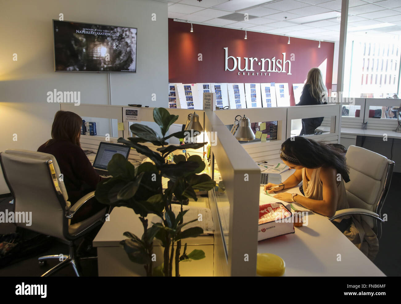 Los Angeles, California, USA. 3rd Feb, 2016. Staff of Burnish Creative at their firm's new office on the Miracle - Stock Image