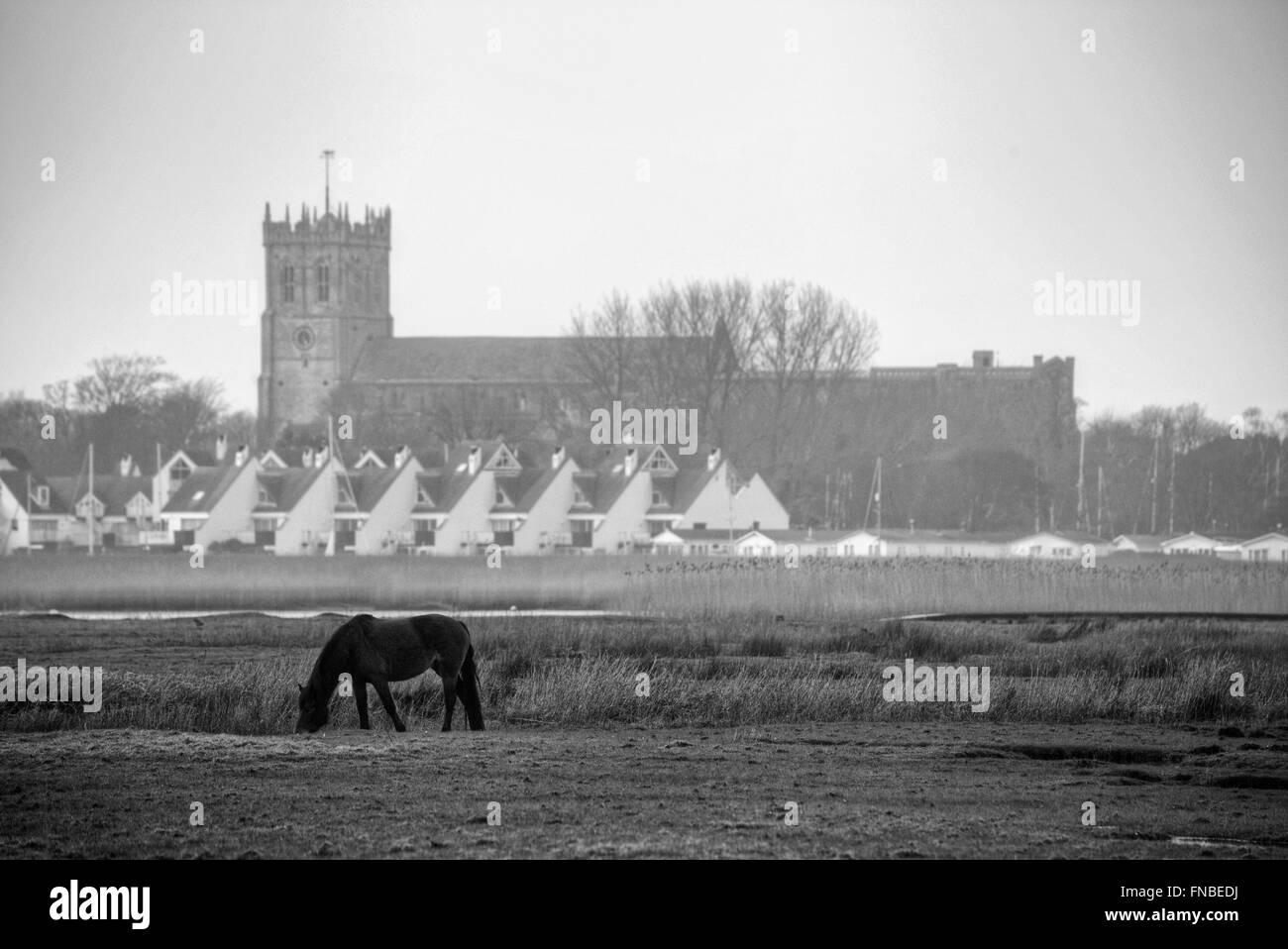 Christchurch Priory, Dorset, England, UK - Stock Image