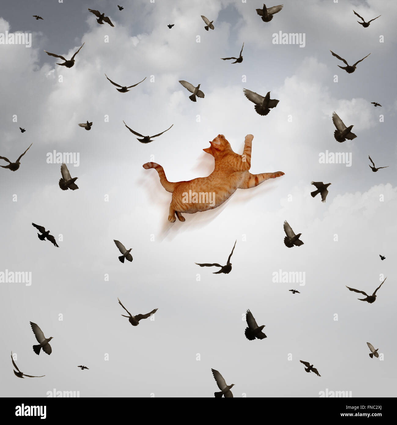 Seize the opportunity concept as a leaping cat jumping high up in the sky to catch flying birds as a business skill - Stock Image