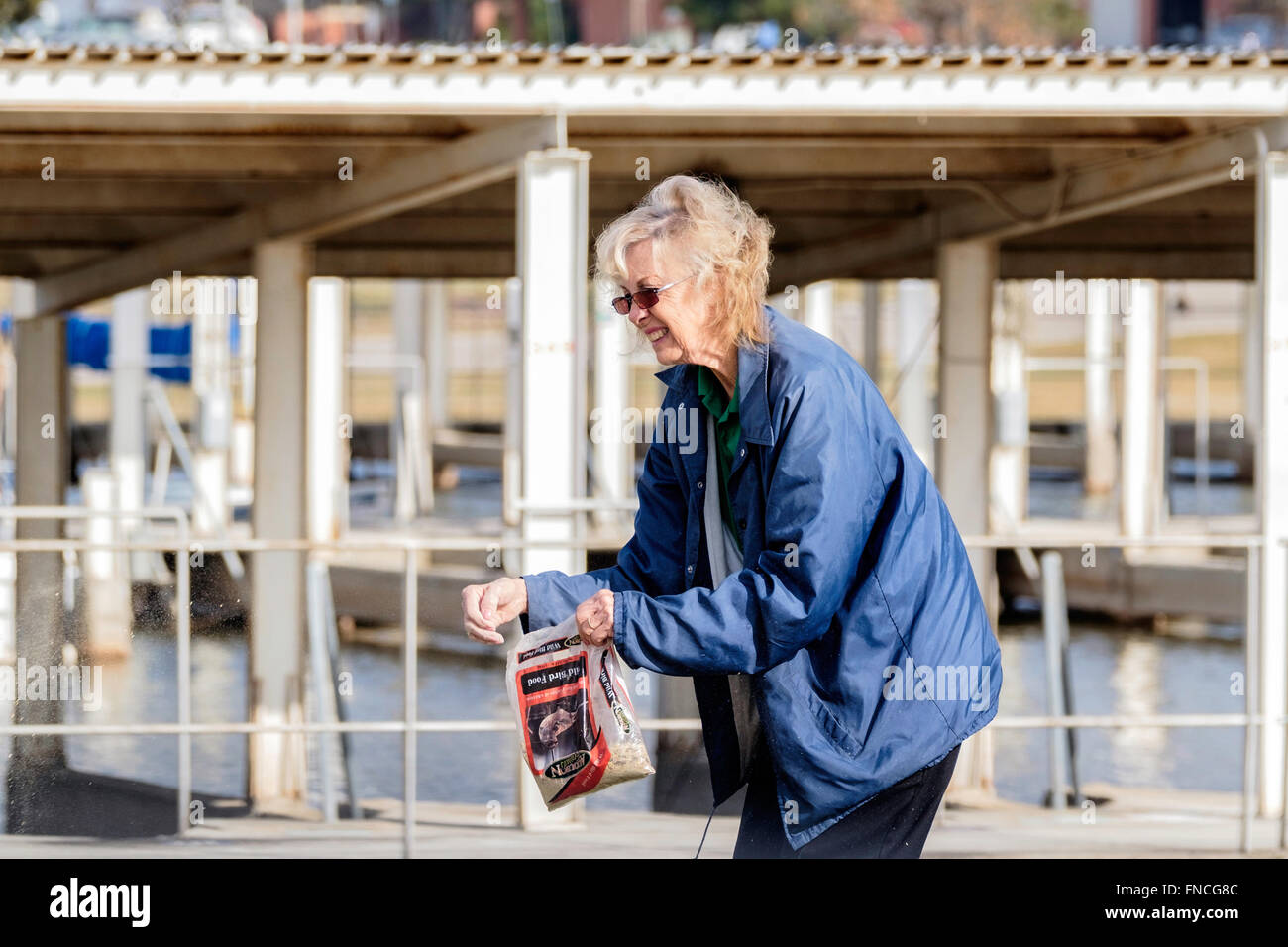 A senior woman throwing out bird seed for geese at a lake marina. Oklahoma, USA. - Stock Image