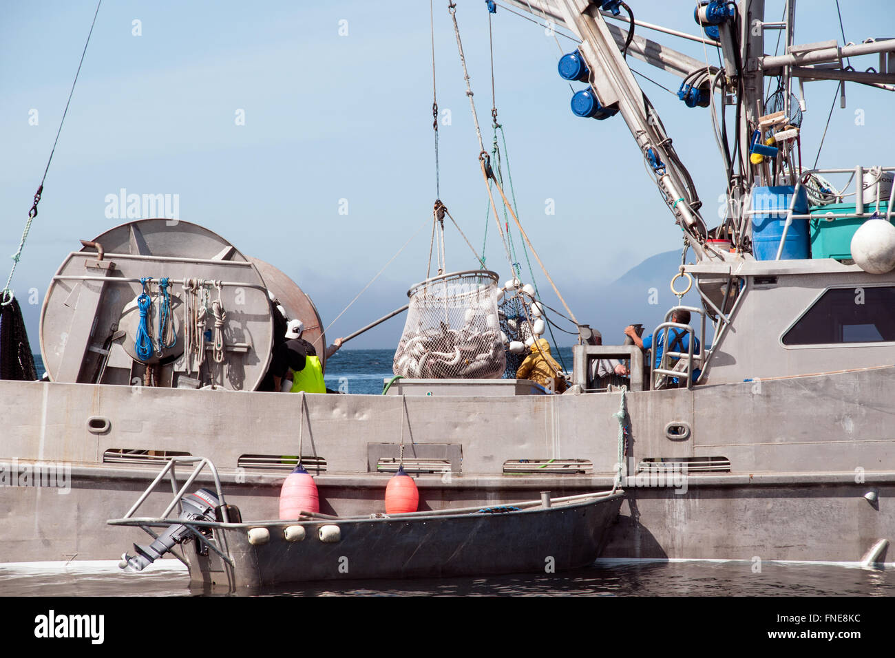 A wild salmon gillnet fishing boat in the Great Bear Rainforest region on the North Pacific coast of British Columbia, - Stock Image
