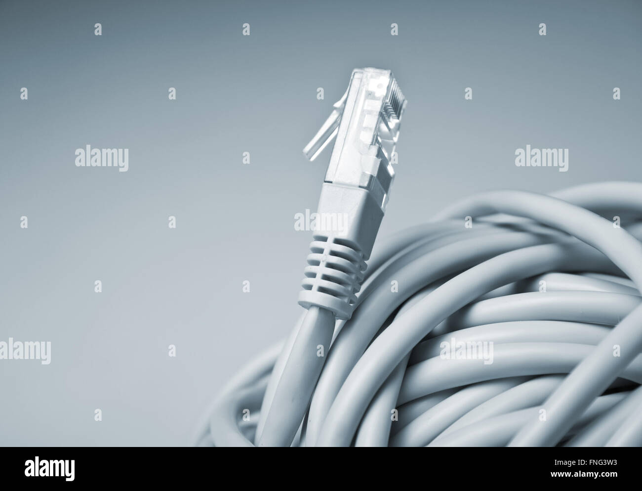Network Connection Socket Stock Photos Wiring Cable Horizontal Side View Of A Gray Image