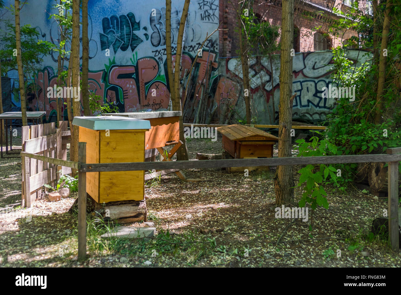 Prinzessinnengarten, Princesses garden, an urban agricultural project. Gardeners grow vegetable and use recycled - Stock Image