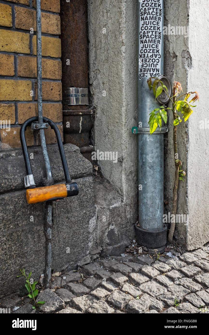 Urban still-life - Bicycle lock, drainpipe and plant struggles to survive in the concrete jungle - Stock Image