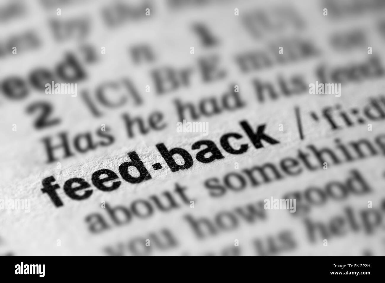 Feedback Definition Word Text in Dictionary Page - Stock Image