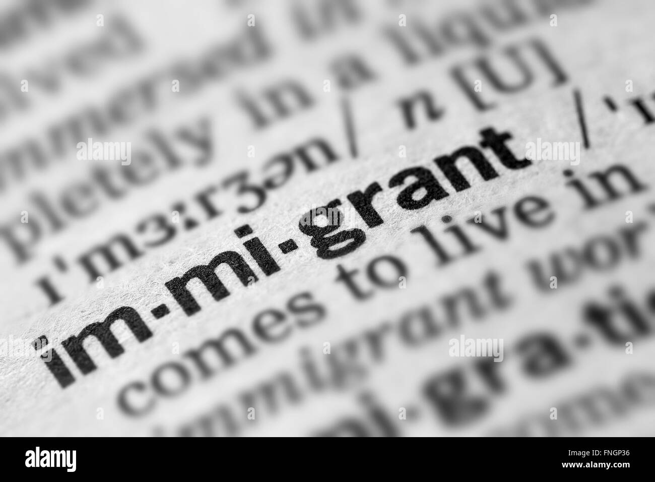 immigrant definition word text in dictionary page stock photo