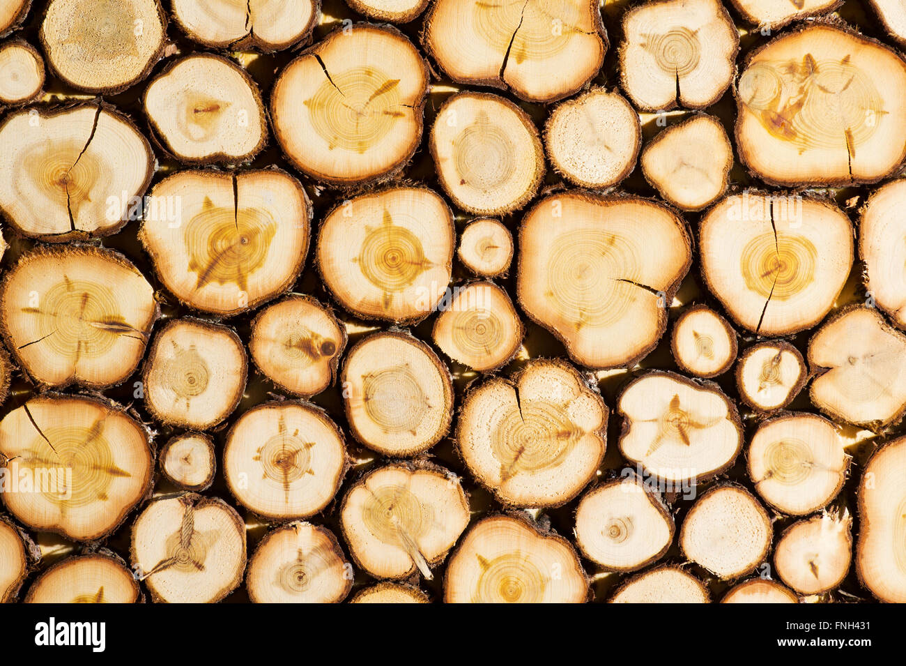 Wood wall, stacked and cut natural juniper is decorative Stock Photo ...