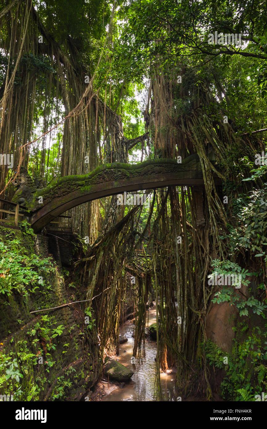 Dragon Bridge in Sacred Monkey Forest Sanctuary, Ubud, Bali, Indonesia - Stock Image