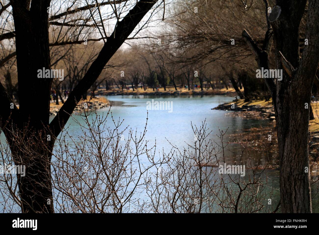 Beautiful lake. Naturally framed lake at the Summer Palace, Beijing, China. - Stock Image