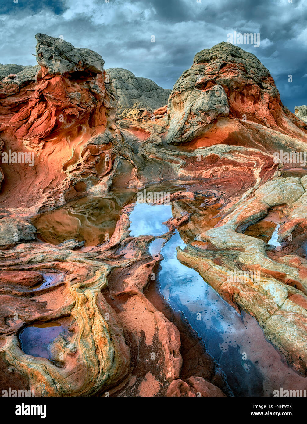 White Pocket with rain water pools. Vermilion Cliffs National Monument, Arizona - Stock Image