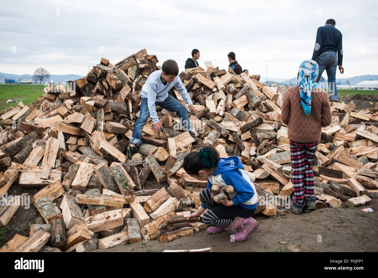 Children are collecting logs for lighting fires to cook, warm and dry their clothes in a field in Idomeni, Greece. - Stock Image