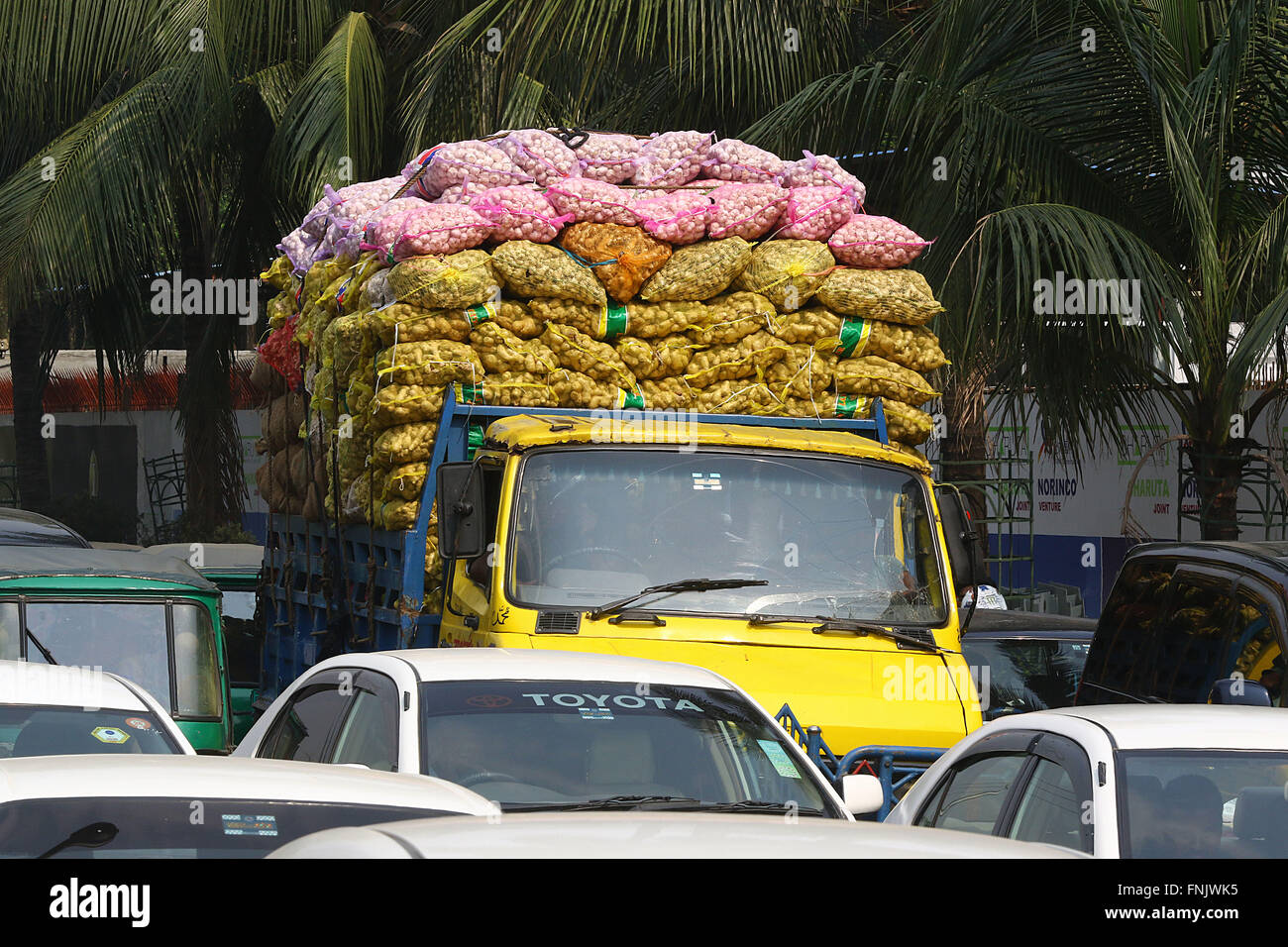 Dhaka, Bangladesh  15 march 2016  Industry ginger being