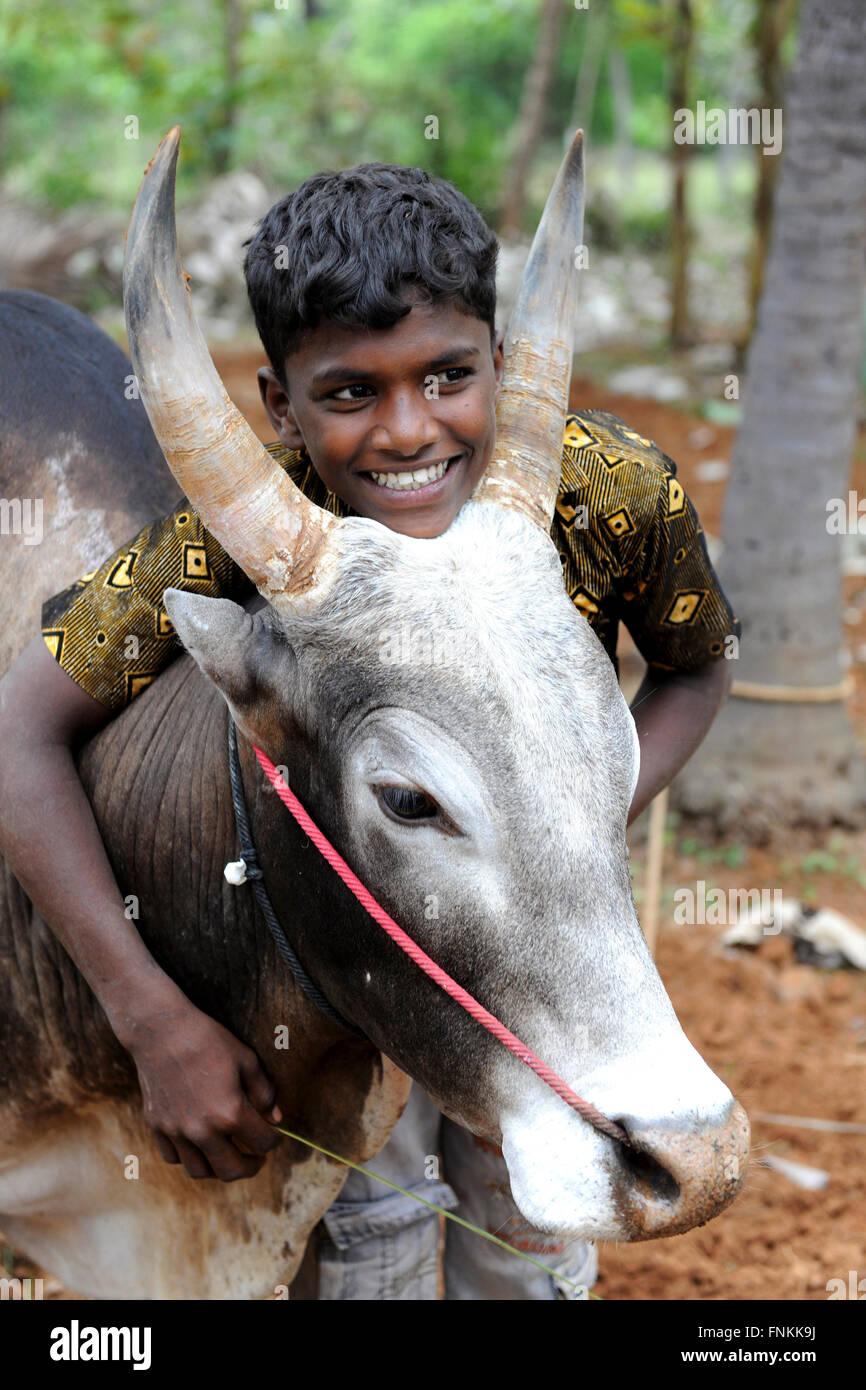 Portrait of a young jallikattu bull tamers jallikattu bull taming during pongal festival madurai