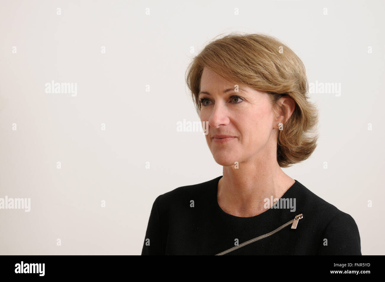 Barbara Ann Cassani, CBE,and Member of the Board of Directors of Air Berlin PLC - Stock Image