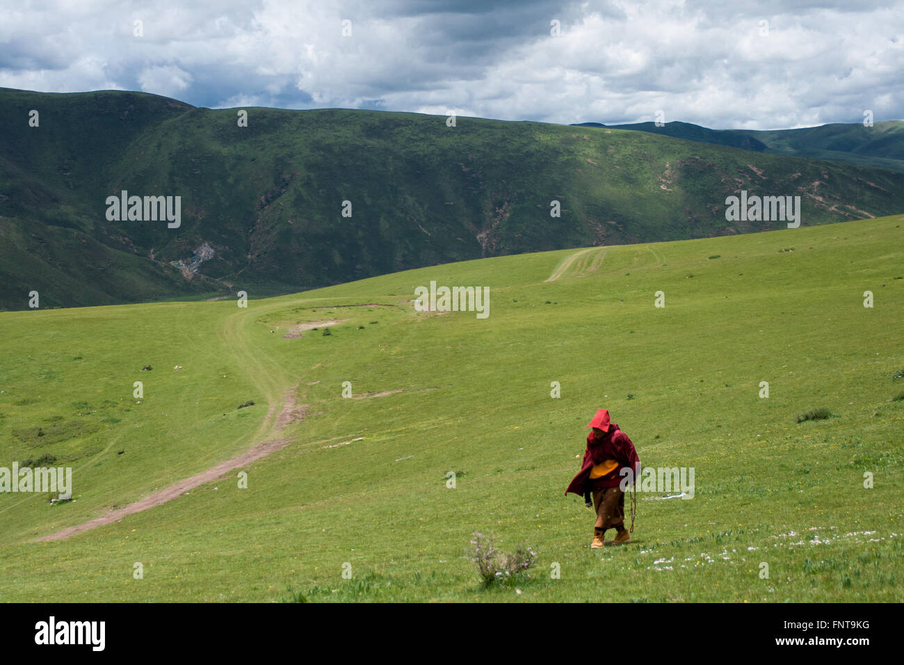 A monk, walking in the mountains in Tibet - Stock Image