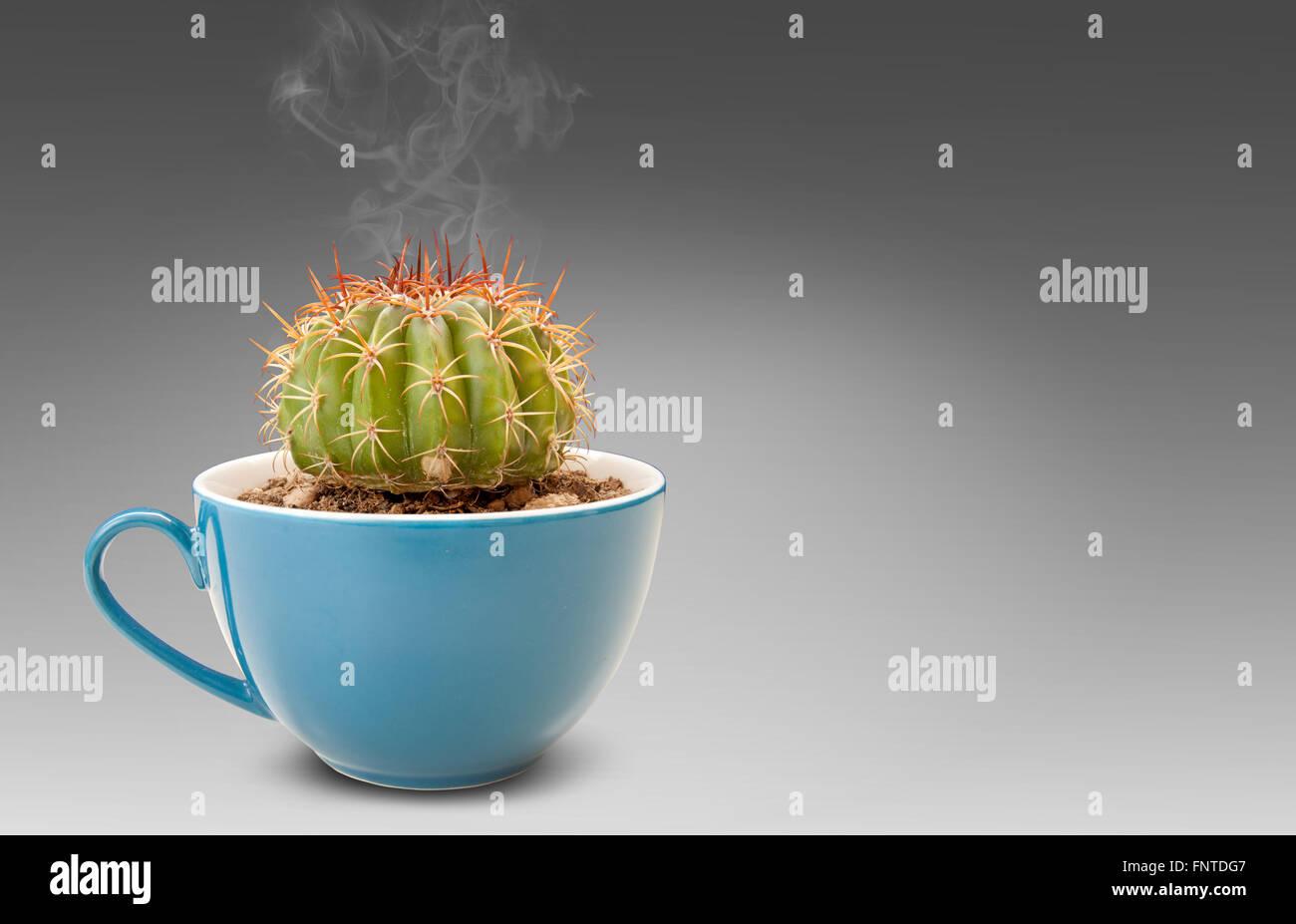 cactus in coffee cup it is idea beverage bad taste similar options