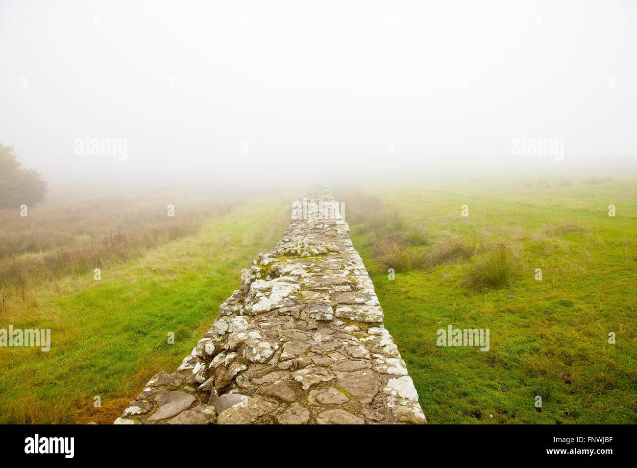 Hadrian's Wall. Fog enveloped. Birdoswald, World Heritage Site, Cumbria, England, United Kingdom. - Stock Image