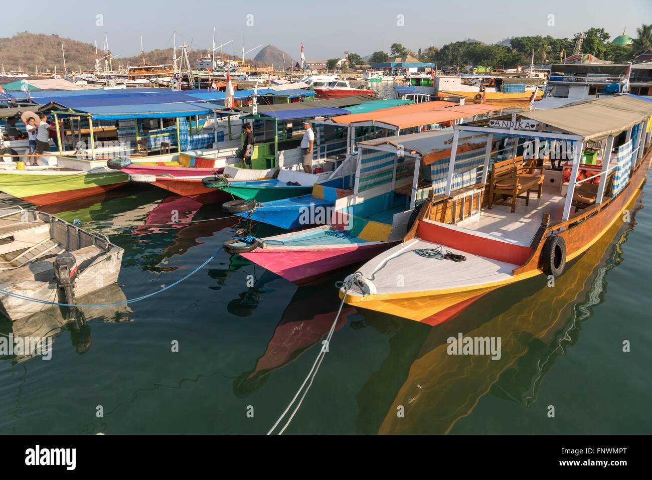 at the harbour in Labuan Bajo, Flores, Indonesia, Asia - Stock Image