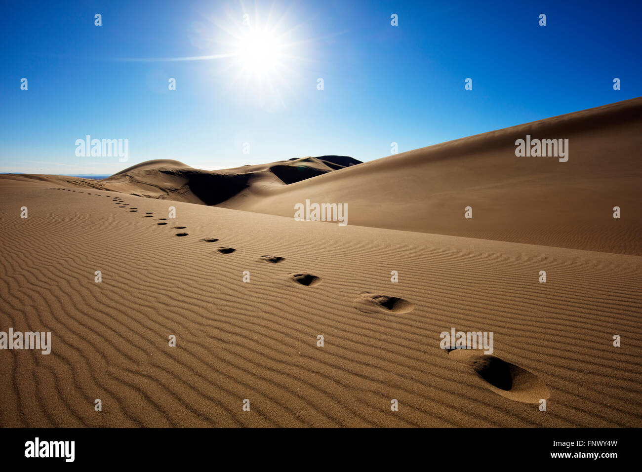 Bright sun over footsteps in remote desert sand dunes, Great Sand Dunes National Park, Colorado, USA. Stock Photo