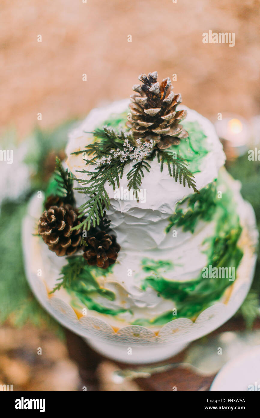 Beautiful wedding cake decorated with pinecones and spruce branches - Stock Image