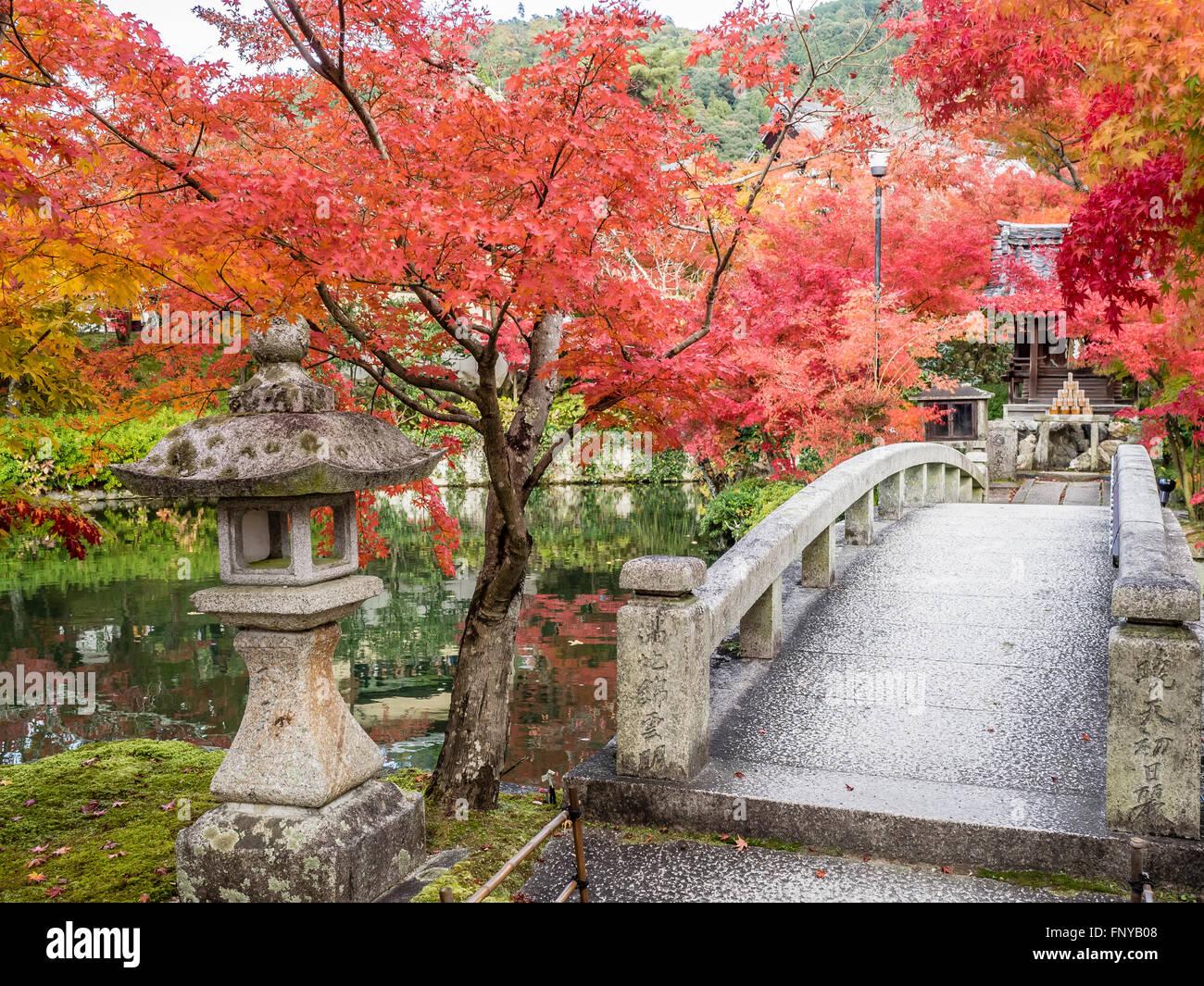 Japanese Zen Garden Bridge And Stone Lantern In Autumn Stock Photo