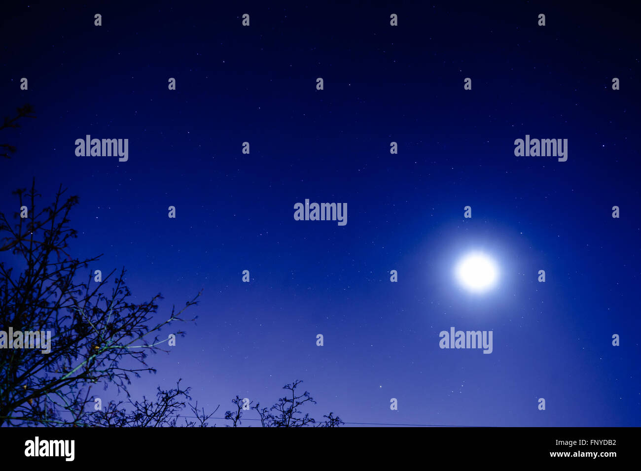 The starry sky and the moon. View from my window. Moon and star dust in the sky. - Stock Image