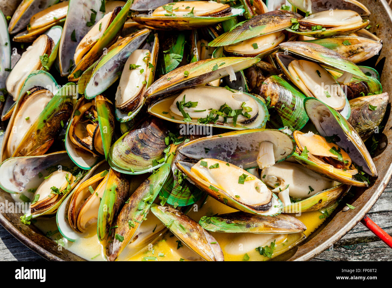 New Zealand Green-Lipped Mussels, Restaurant, Waipu, North island, New Zealand - Stock Image