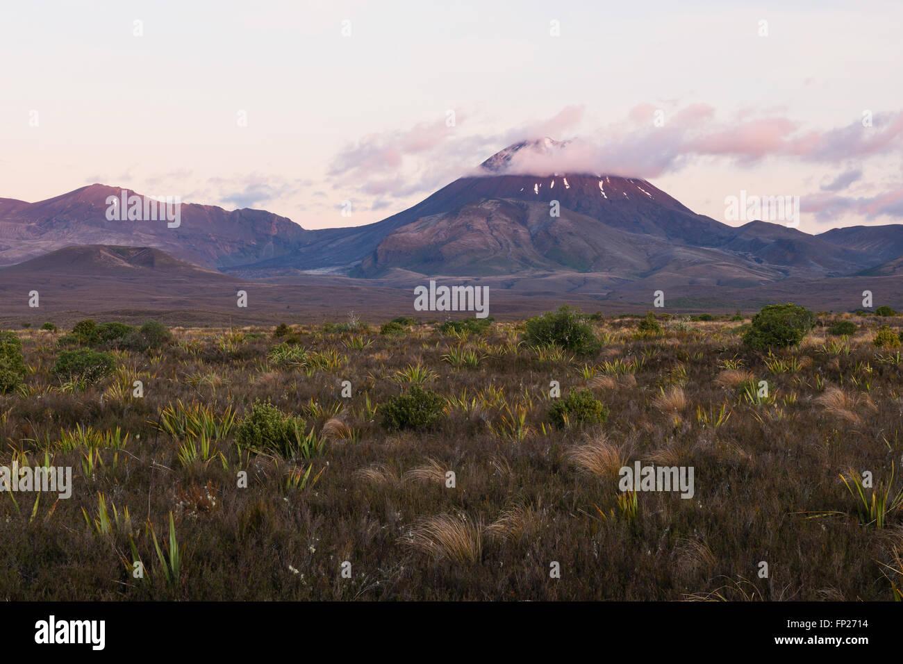 Mount Ngauruhoe volcano at sunset, Tongariro National Park, New Zealand - Stock Image