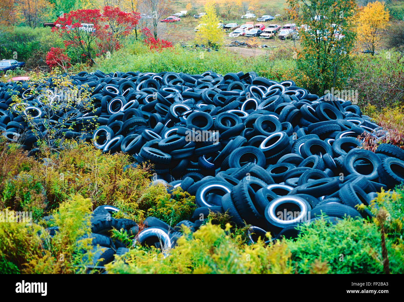 Old used automobile tires in landfill - Stock Image