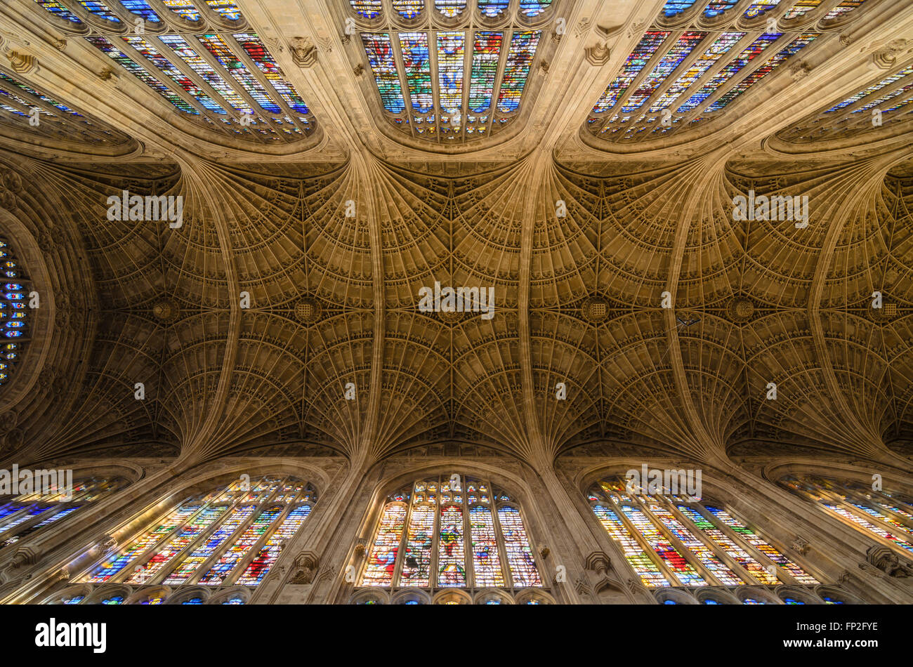 The ornate ceiling of Kings College Chapel, Kings College, University of Cambridge, England, United Kingdom. Stock Photo