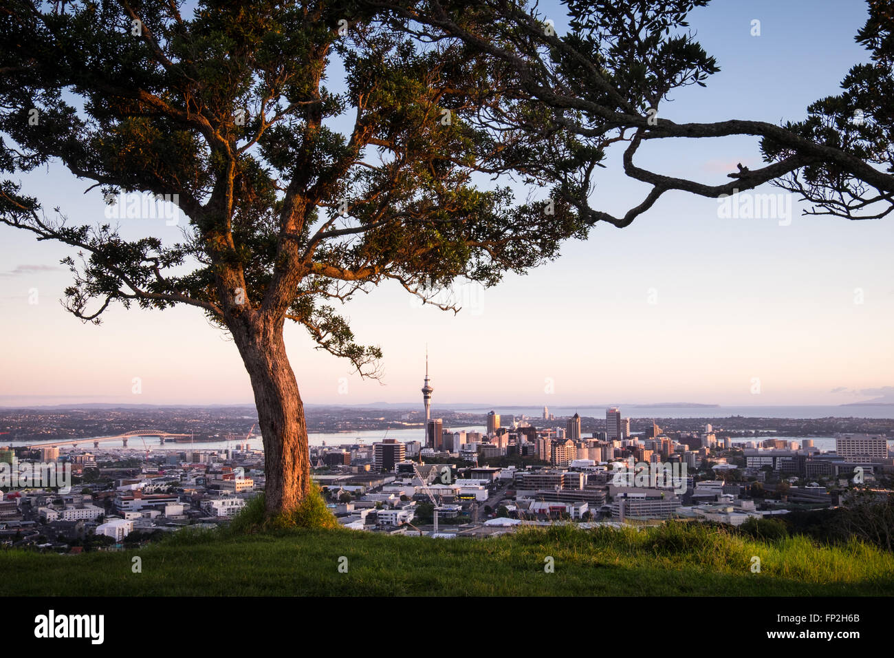 A view of Auckland city from Mt. Eden. - Stock Image