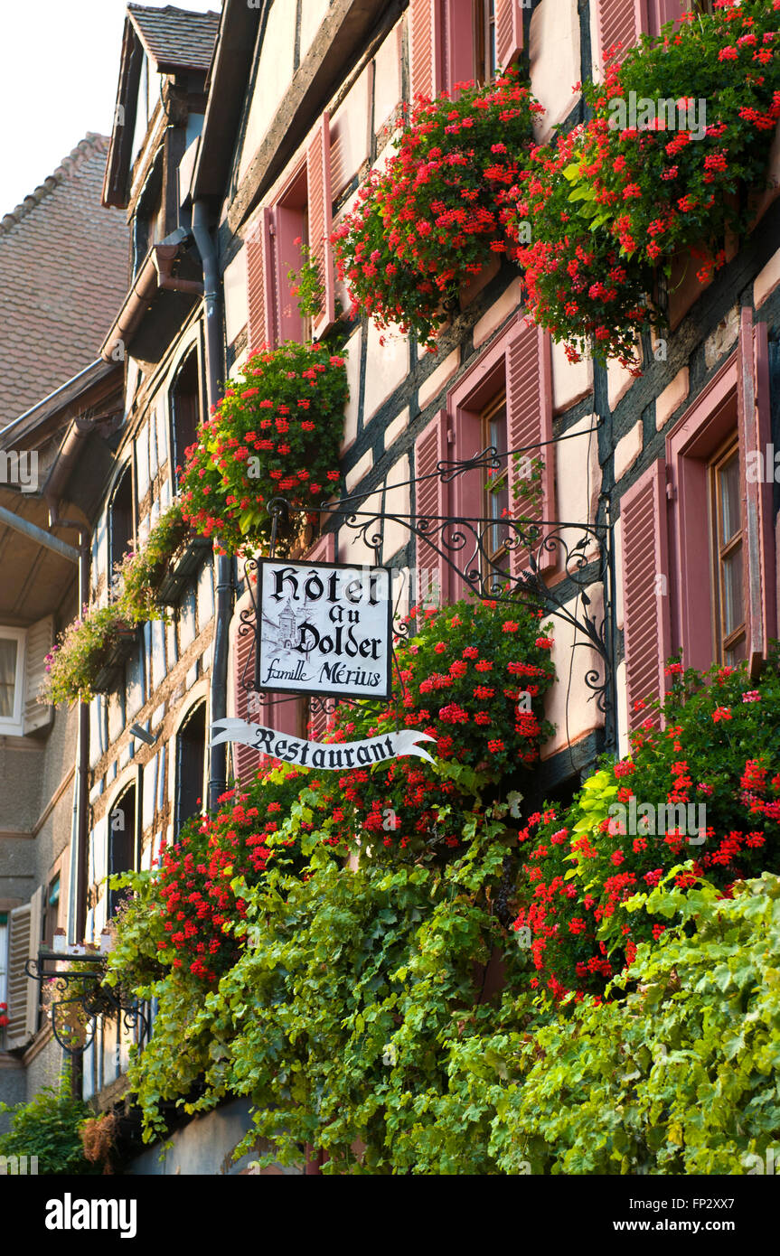 Spectacular floral exterior of renowned restaurant Hotel au Dolder Riquewihr Alsace France - Stock Image