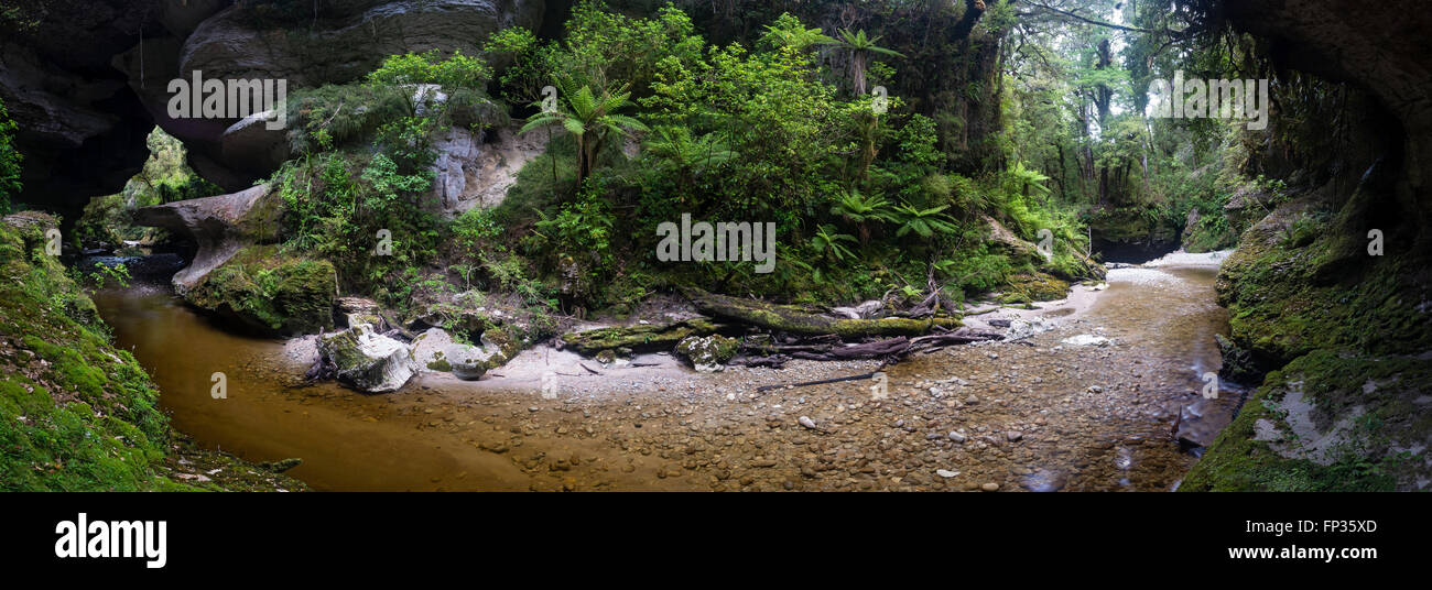 Panorama of river flowing into Honeycomb Hill Arch, Oparara basin, New Zealand Stock Photo