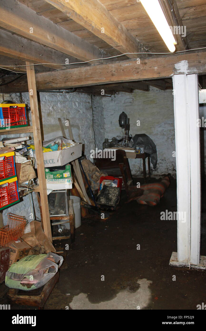 Cluttered damp cellar or basement - Stock Image