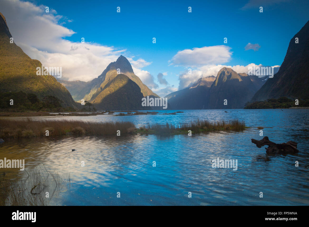 Mitre Peak in Milford Sound New Zealand - Stock Image