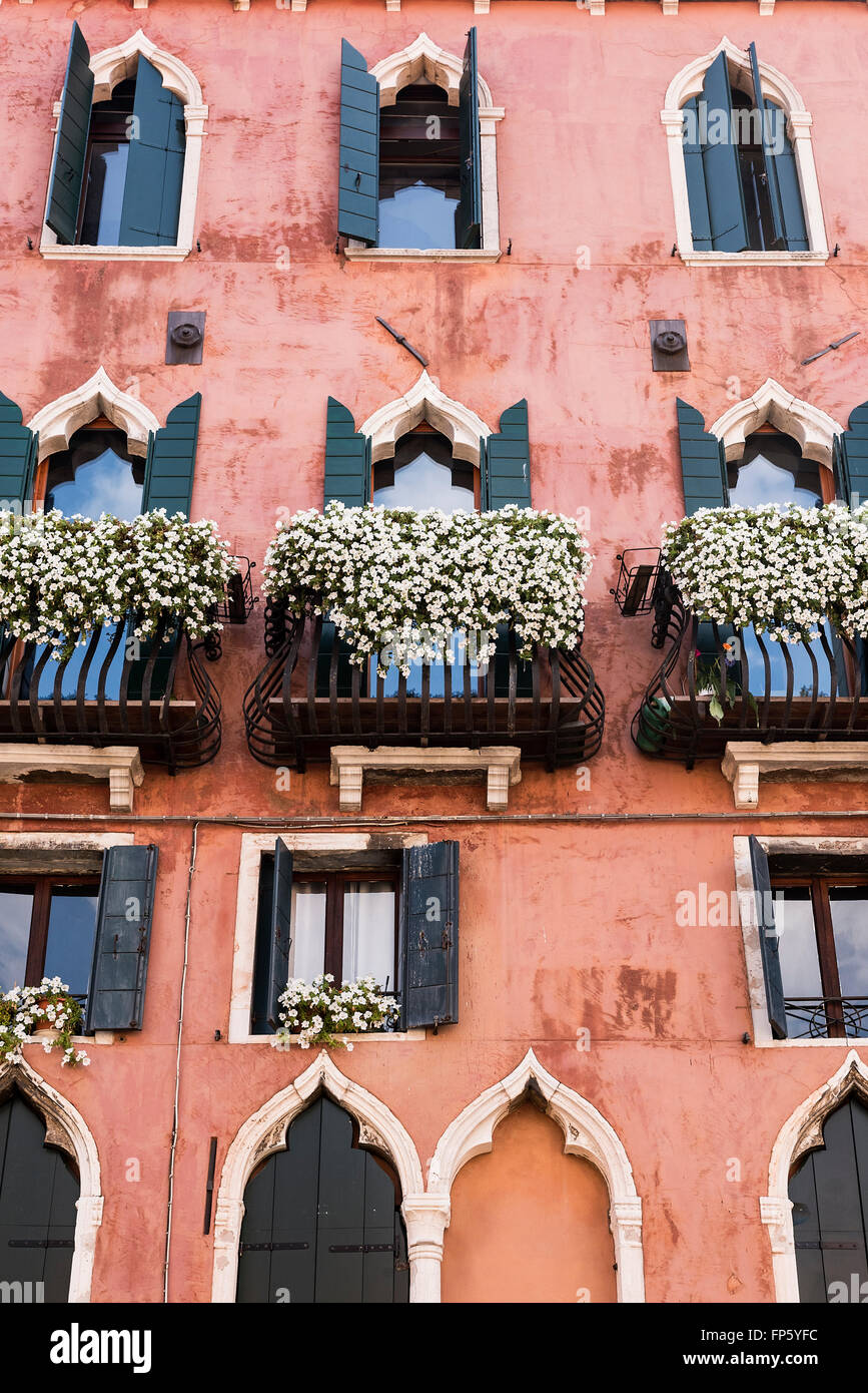 Flowers and plants adorn the Venetian balconies, Venice, Italy - Stock Image
