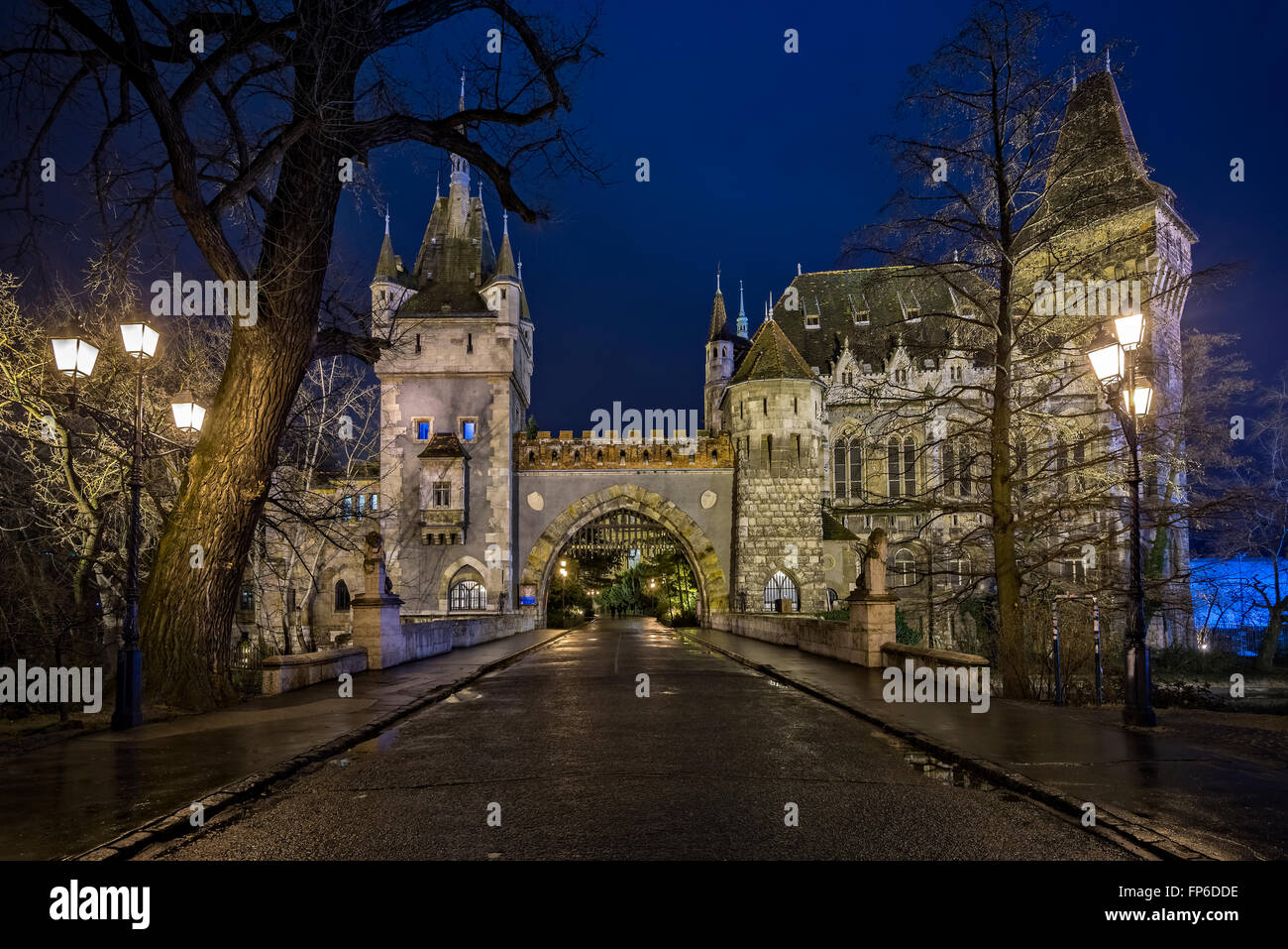 Vajdahunyad Castle at night in Budapest Hungary - Stock Image