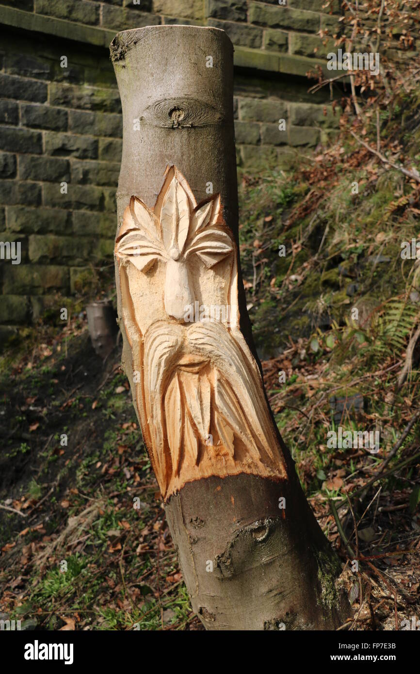 Face wood carving on the Trans Pennine Trail, Stottercliffe, Penistone, South Yorkshire. Chain saw carved from a - Stock Image
