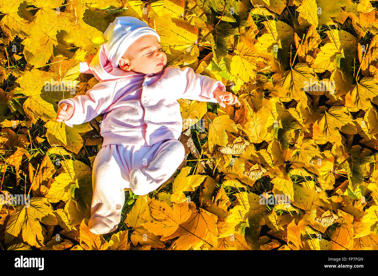 baby lay foliage ground autumn - Stock Image