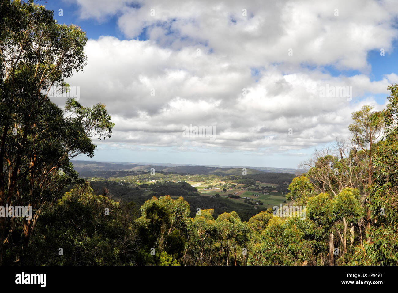 View into the Picadilly Valley from Mount Lofty near Adelaide, South Australia, Australia. - Stock Image