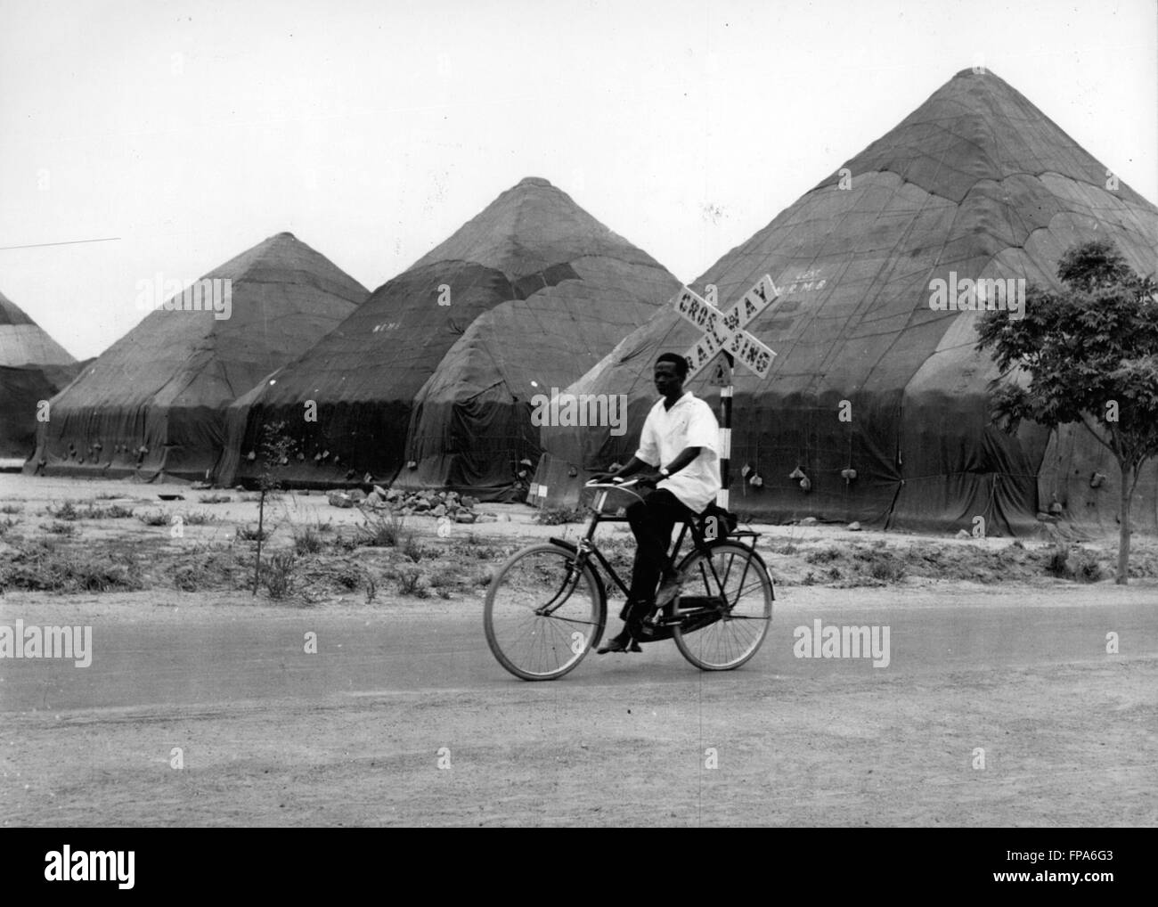1962 - ''Banks of Nigeria'' : Some of the numerous pyramids of Groundnuts - peanuts to the Westerner - Stock Image