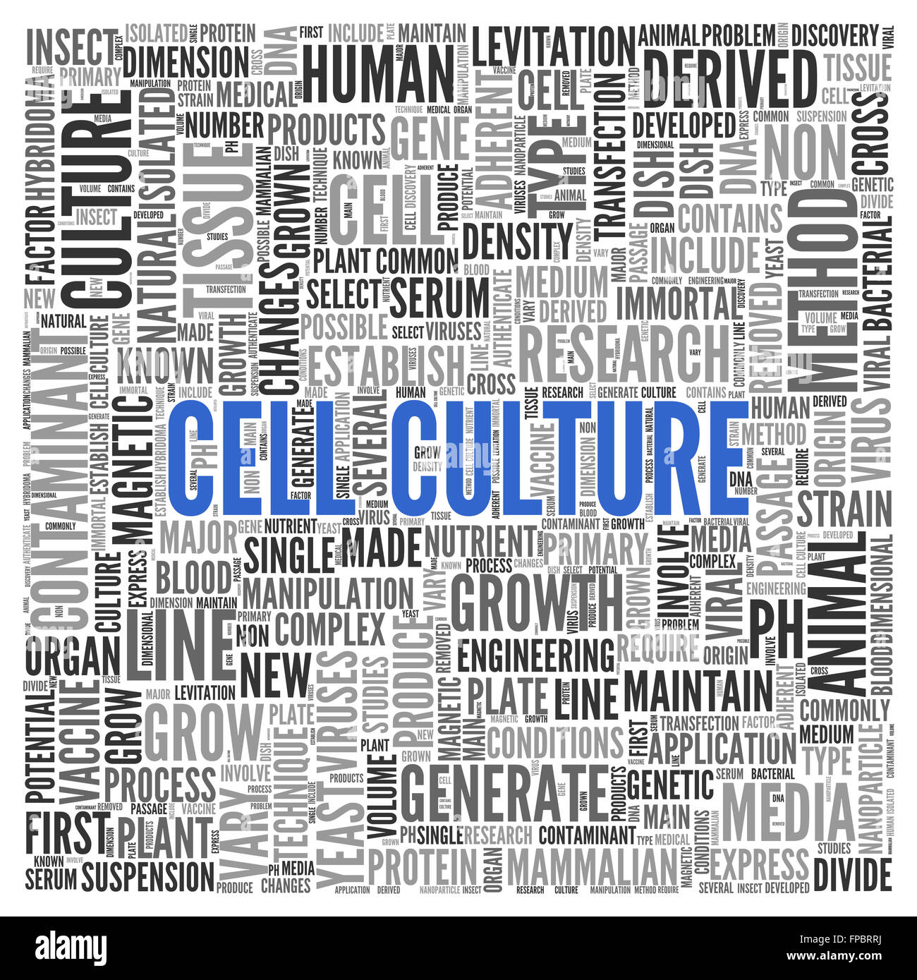 Close up CELL CULTURE Text at the Center of Word Tag Cloud