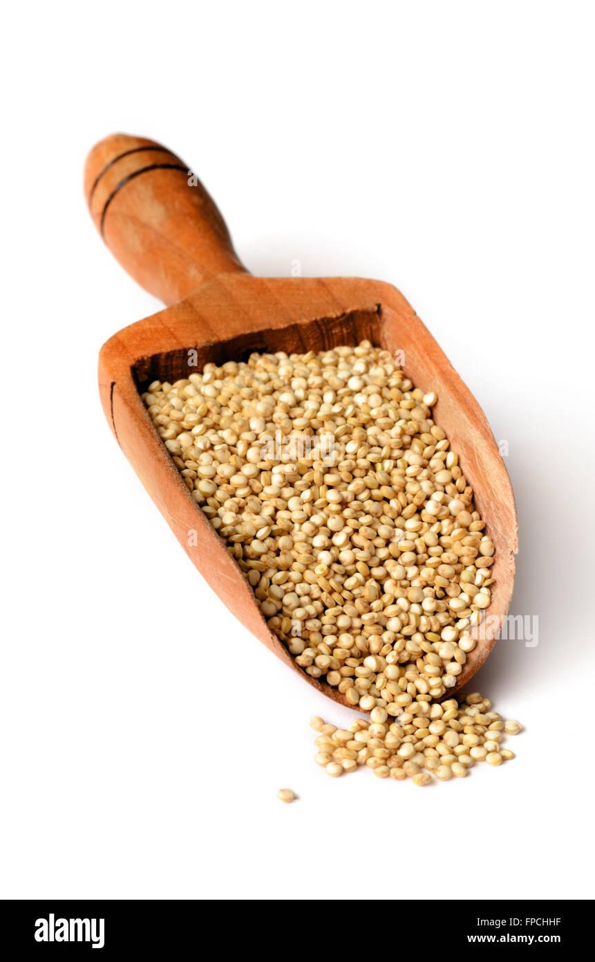 Healthy white quinoa seeds close up shot Stock Photo