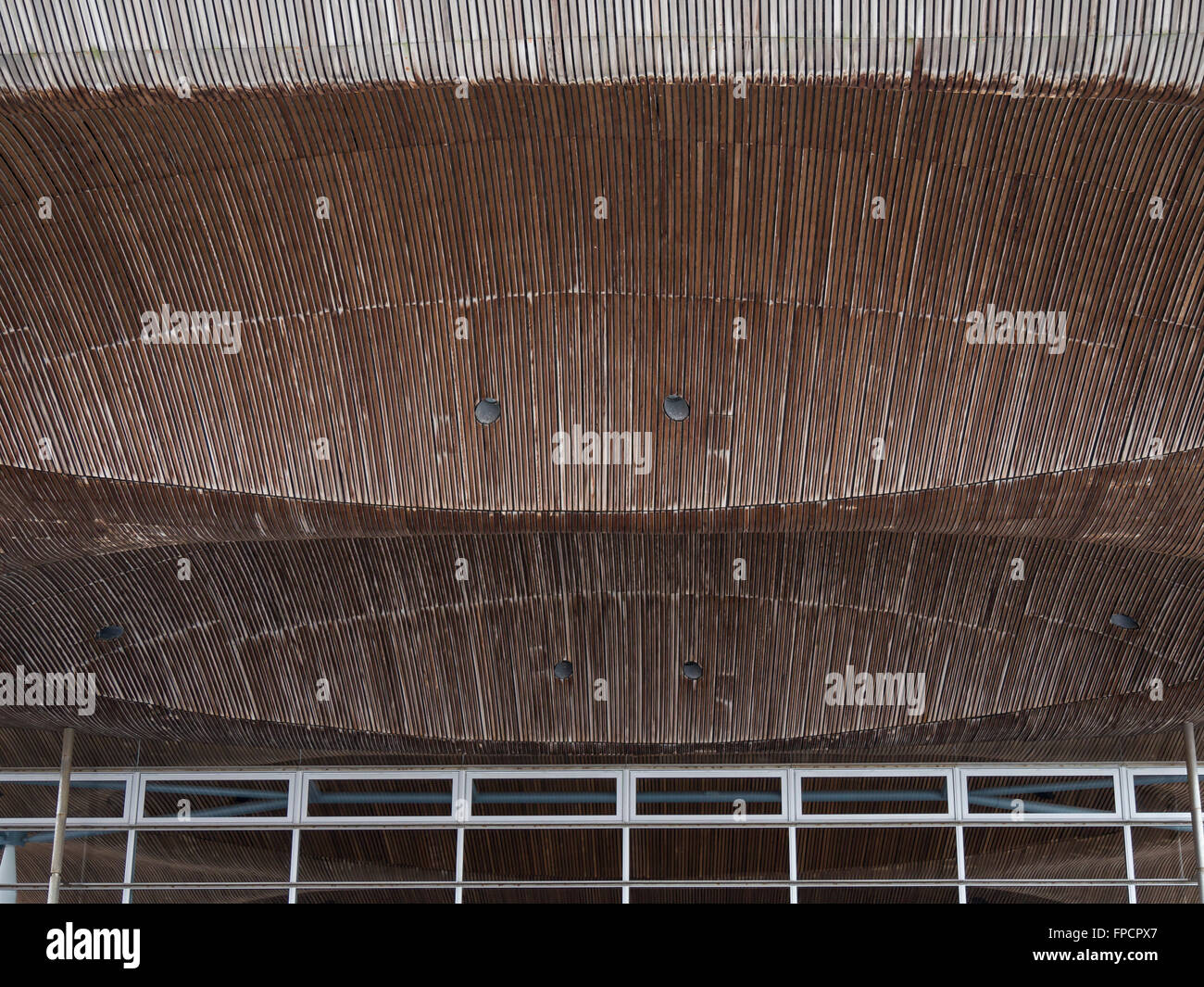 Roof detail, National Assembly for Wales, Cardiff Bay, Cardiff, South Glamorgan, Wales, UK, Europe - Stock Image
