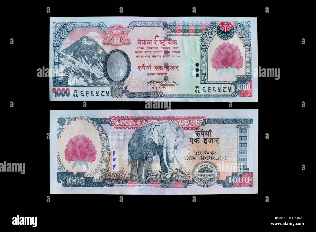 Asia nepalese nepali devanagari alphabet script front nobody stock nepal currency 1000 rupees front and back mt everest elephant altavistaventures Images