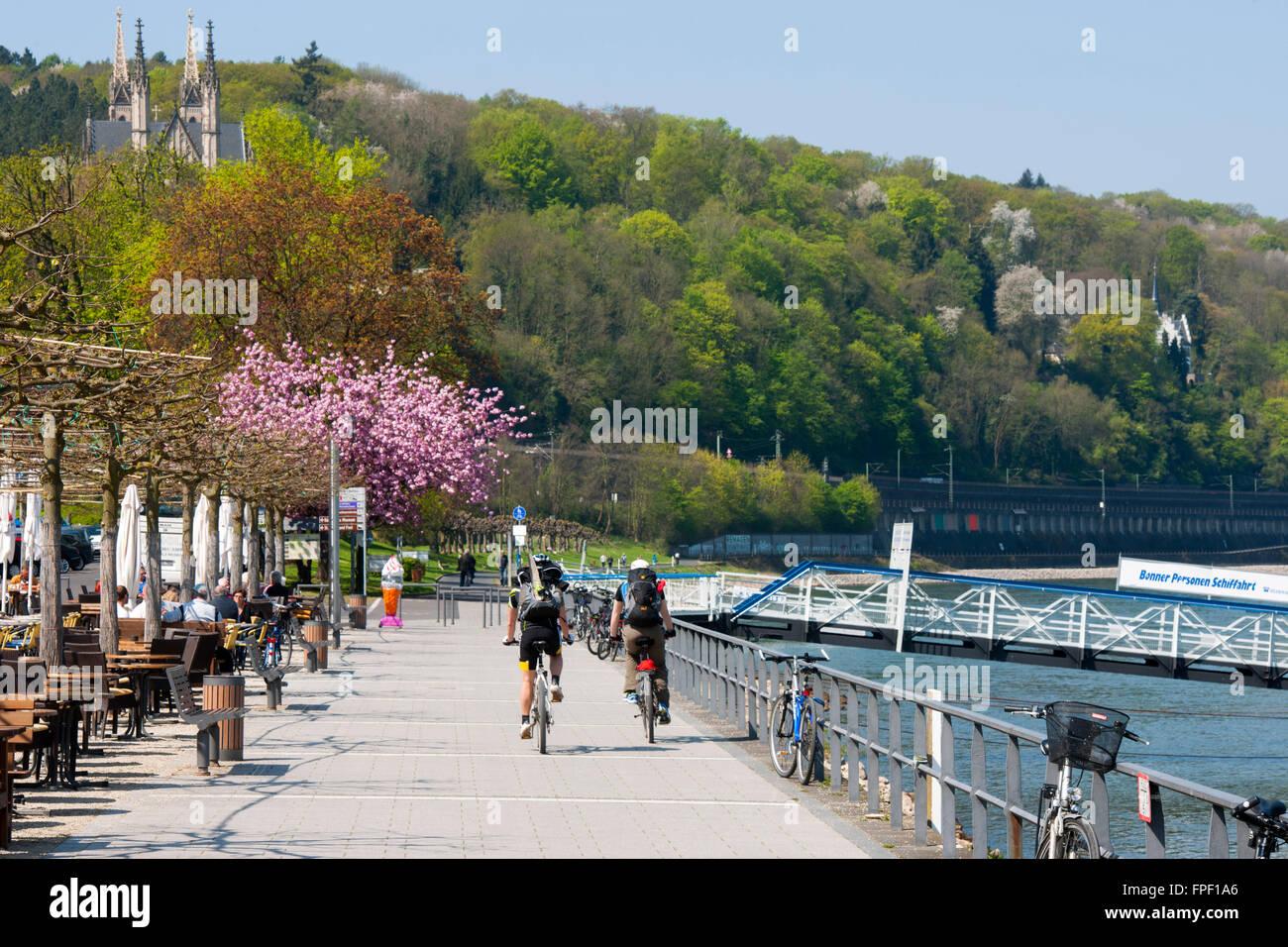 Deutschland Rheinland Pfalz Remagen Rheinpromenade Im Hintergrund Stock Photo Alamy