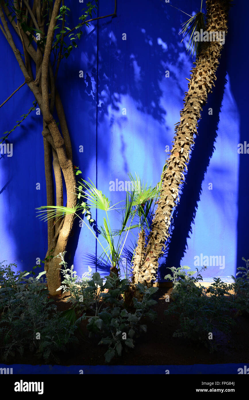Morocco marrakech rue yves st laurent jardin majorelle stock photo 99931906 alamy - Jardin majorelle yves saint laurent ...