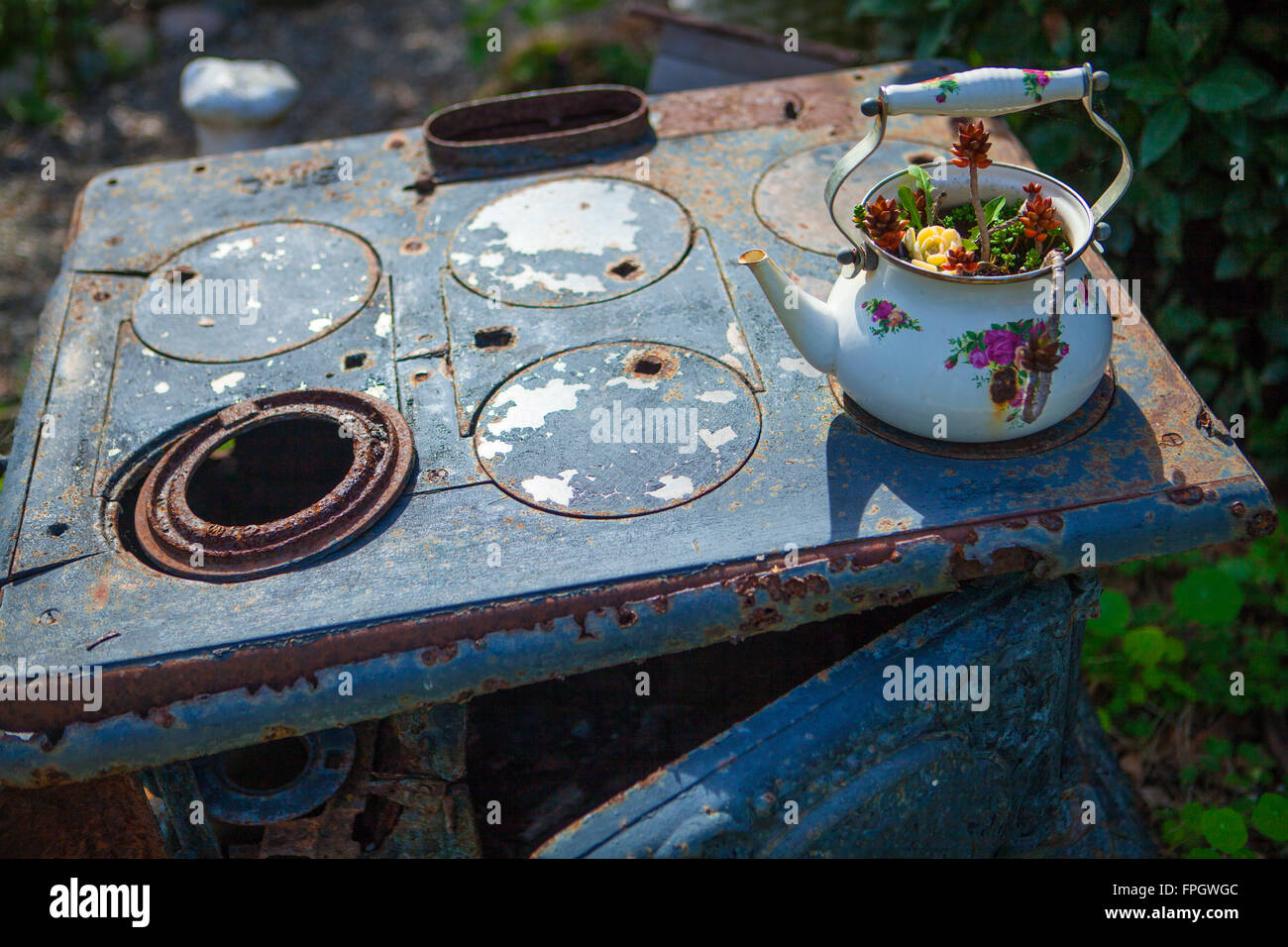old stove and teapot planter in garden, Spellbound Herbs Gift Shop and Garden, Cambria, California - Stock Image