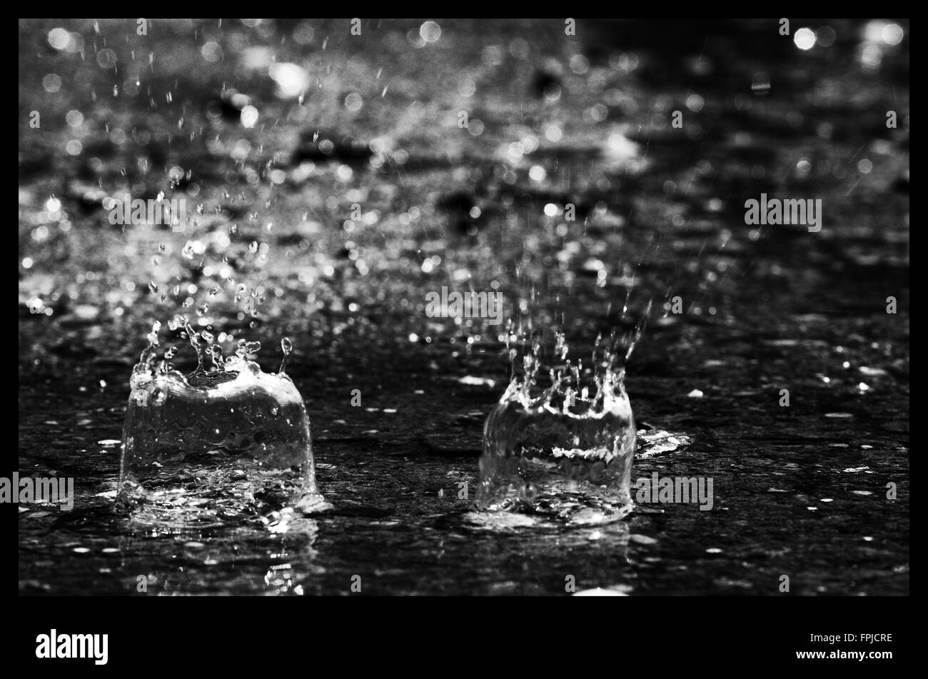Rain drops in a puddle - Stock Image