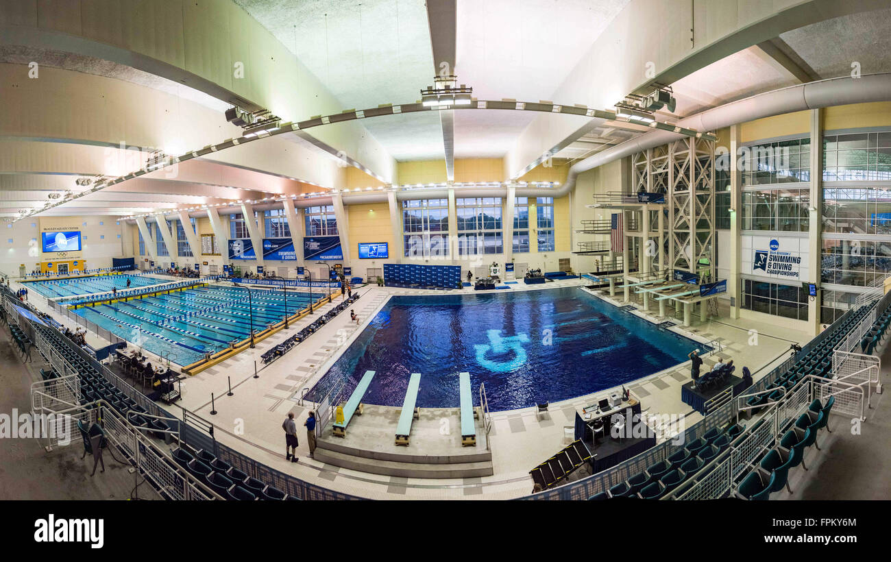 a-panorama-during-the-ncaa-womens-swimmi